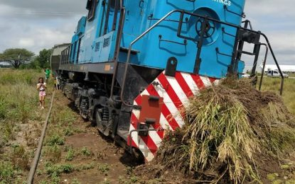 Descarriló una locomotora cerca de Huinca Renancó